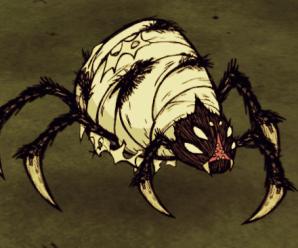 Rüyada örümcek görmek, bu 16 tabiri mutlaka okuyun!