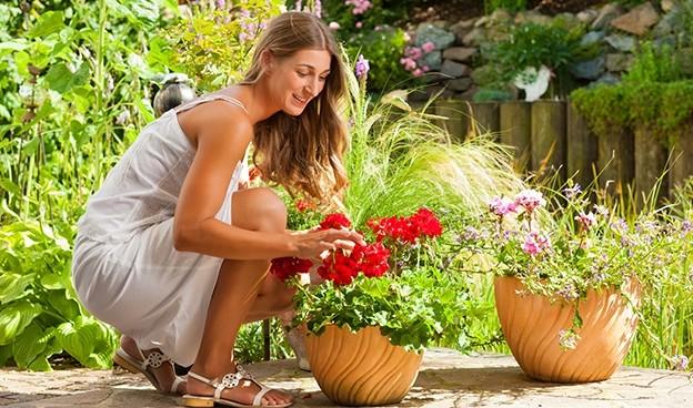 rüyada çiçek toplamak 5