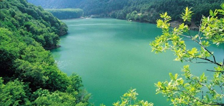 Rüyada Göl Görmek Nedir 6 Farklı Detayla çok Ilginç Tabirler Yüzde